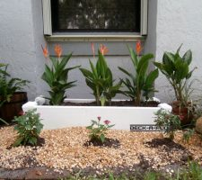 planter-galeri1