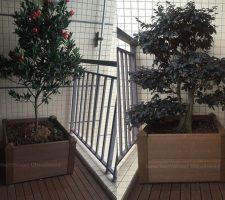 planter-galeri2