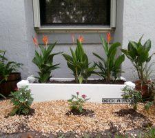 planter-galeri5