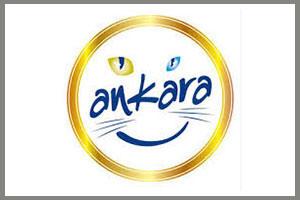 ankara-deck